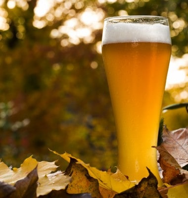 Fall Beer TapHunter