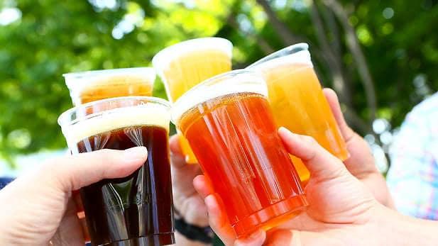 beer spring